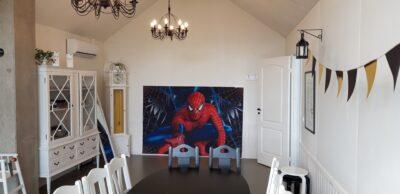 Fotosein Spiderman