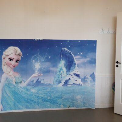 Fotosein Elsa